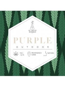 Fleurs de CBD - La Purple Outdoor  CBD