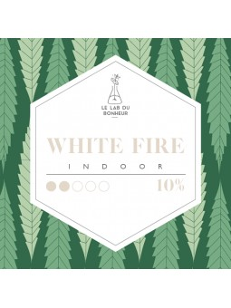 Fleurs de CBD - La White Fire  CBD