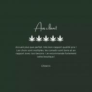 🌱 Un grand merci pour vos avis ! 😍  👉Effectivement, l'accueil et l'accompagnement de nos clients sont au coeur de nos priorités.  🤝 Nous formons nos vendeurs afin de pouvoir vous guider au mieux dans votre consommation et vous proposer le produit qui vous conviendra le plus 💚  #cbd #cbdlife #cbdshop #cbdfrance #cbdflowers #cbdhealth #cbdshopparis #cbdcures #cbdmovement #cbdforthepeople #cbdforpain #cbdsaves #lelabdubonheur #cbdparis #pariscbd #chanvre #relaxation #detente #bienetre #naturel